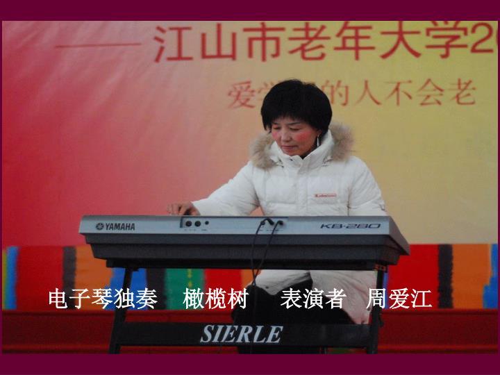 电子琴独奏    橄榄树     表演者   周爱江