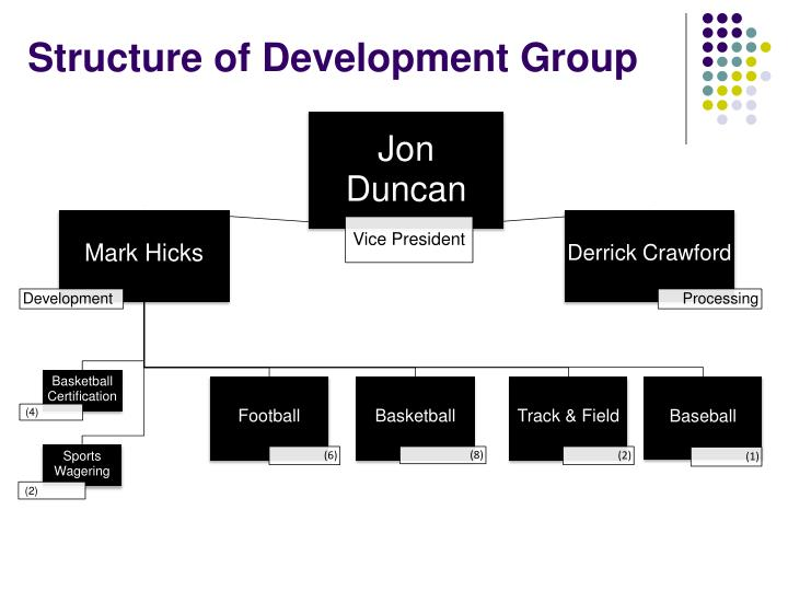Structure of Development Group