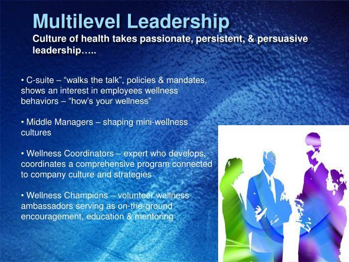 Multilevel Leadership