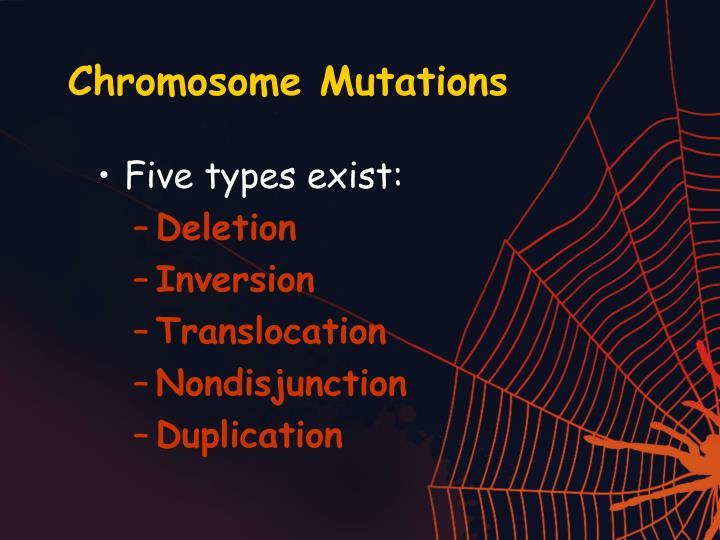 Chromosome Mutations