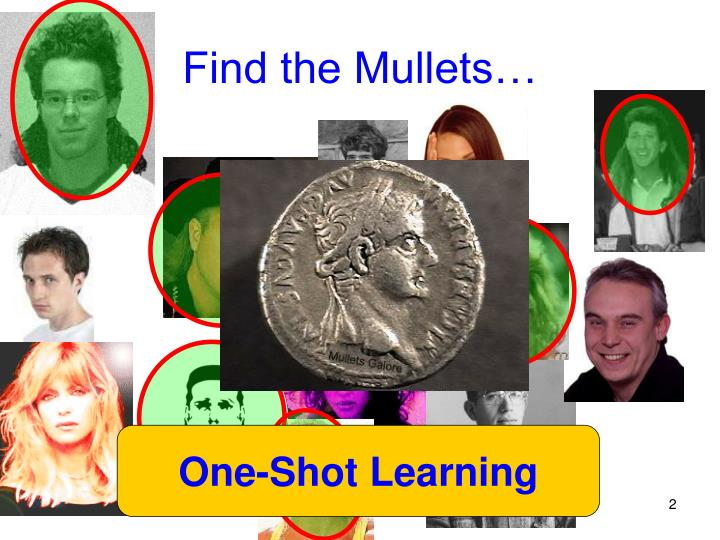 Find the Mullets…