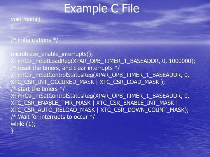 Example C File
