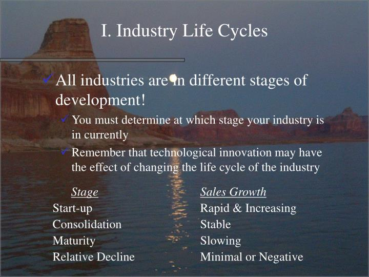 I. Industry Life Cycles