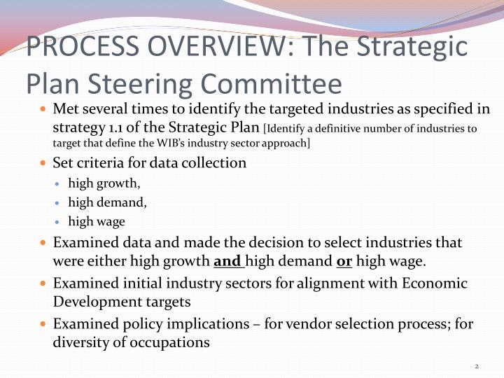 PROCESS OVERVIEW: The Strategic Plan Steering Committee
