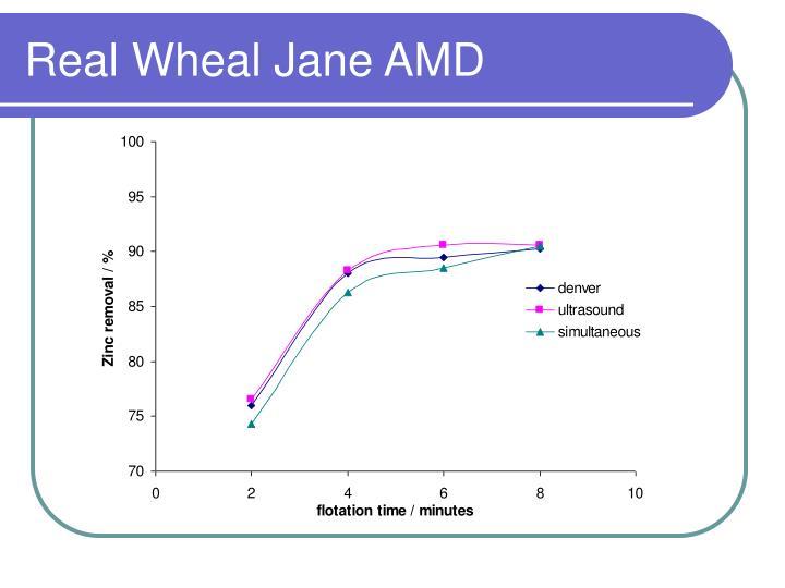Real Wheal Jane AMD