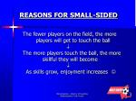 reasons for small sided