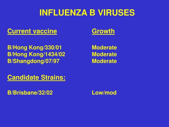 INFLUENZA B VIRUSES