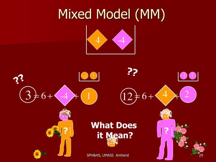 Mixed Model (MM)