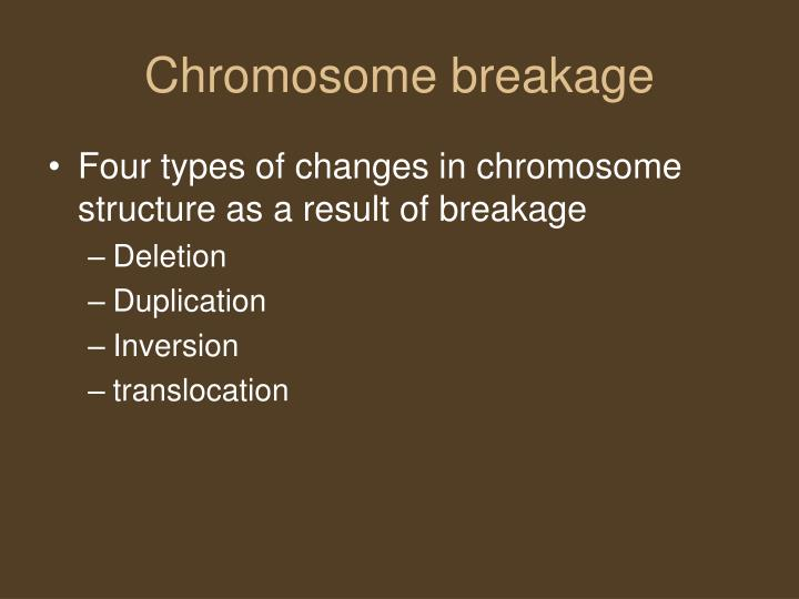 Chromosome breakage