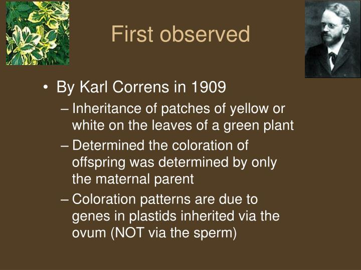 First observed