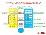 xml tm non translatable text