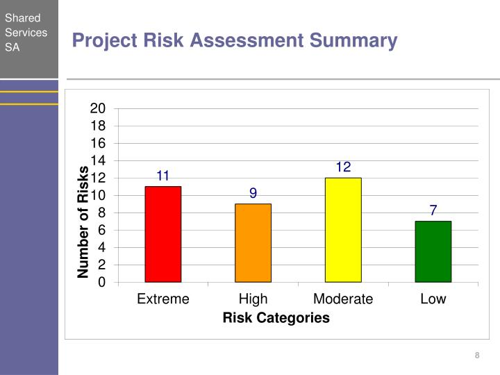 Project Risk Assessment Summary