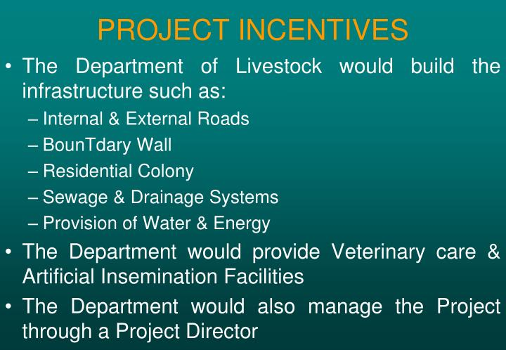PROJECT INCENTIVES