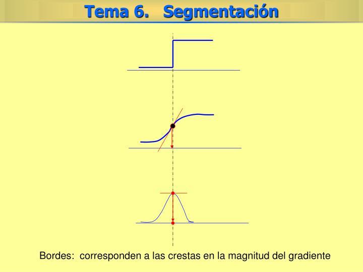 Bordes:  corresponden a las crestas en la magnitud del gradiente