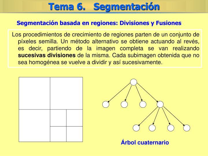 Segmentación basada en regiones: Divisiones y Fusiones