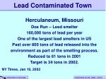 lead contaminated town
