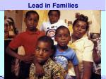 lead in families