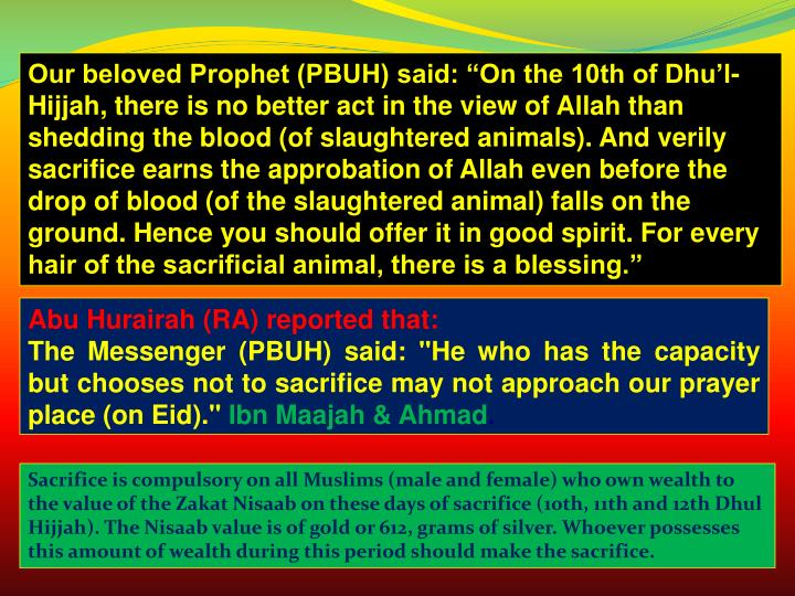 """Our beloved Prophet (PBUH) said: """"On the 10th of Dhu'l-Hijjah, there is no better act in the view of Allah than shedding the blood (of slaughtered animals). And verily sacrifice earns the approbation of Allah even before the drop of blood (of the slaughtered animal) falls on the ground. Hence you should offer it in good spirit. For every hair of the sacrificial animal, there is a blessing."""""""
