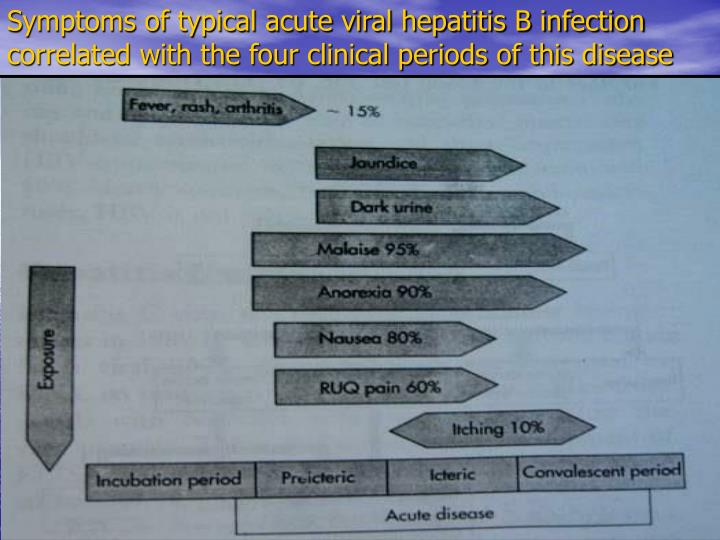 Symptoms of typical acute viral hepatitis B infection correlated with the four clinical periods of this disease