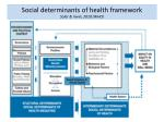 s ocial determinants of health framework solar irwin 2010 who
