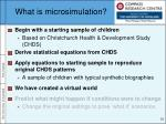 what is microsimulation