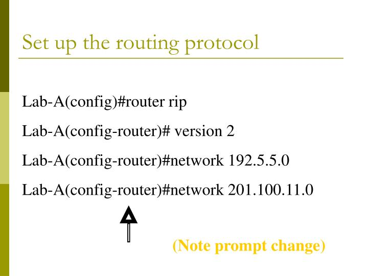 Set up the routing protocol