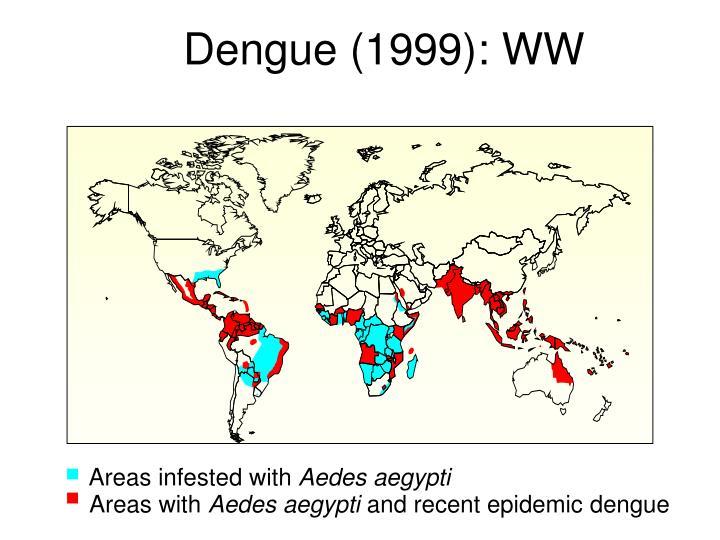 Dengue (1999): WW