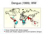 dengue 1999 ww