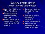 colorado potato beetle action threshold determination