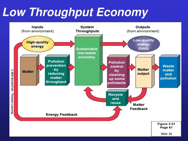 Low Throughput Economy