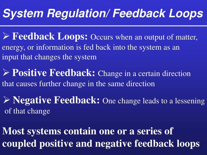 System Regulation/ Feedback Loops