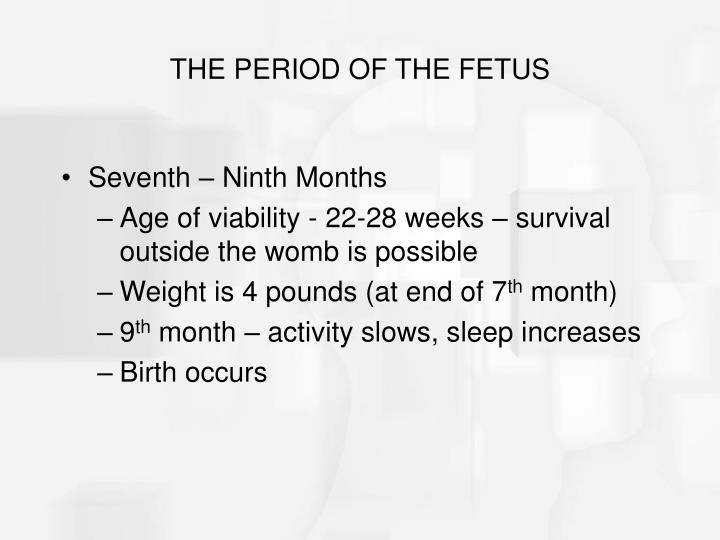 THE PERIOD OF THE FETUS