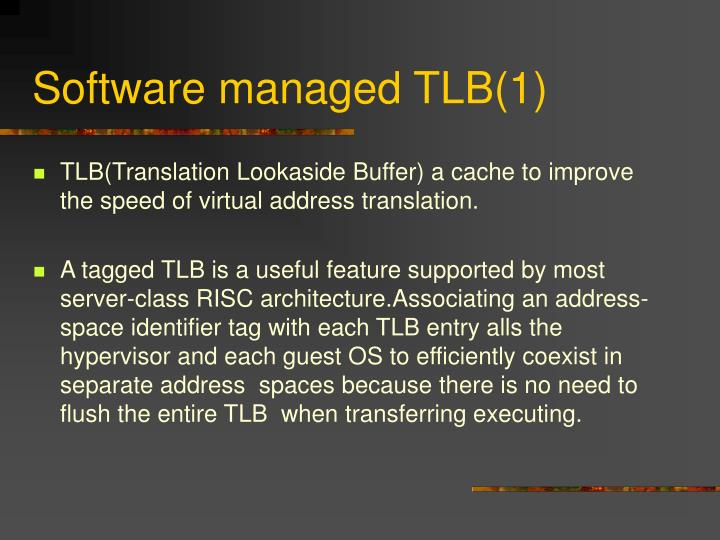 Software managed TLB(1)