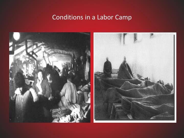 Conditions in a Labor Camp