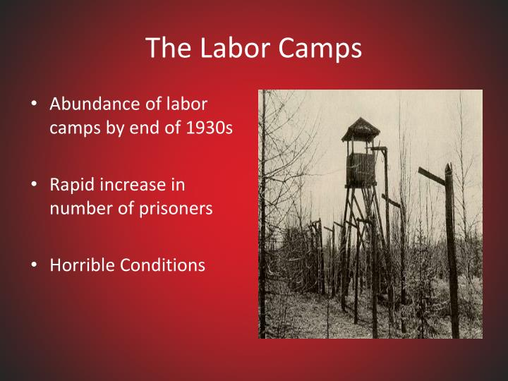 The Labor Camps
