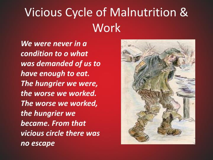 Vicious Cycle of Malnutrition & Work