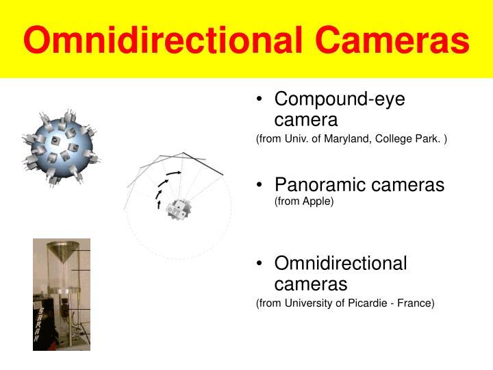 Compound-eye camera
