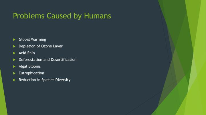 Problems Caused by Humans