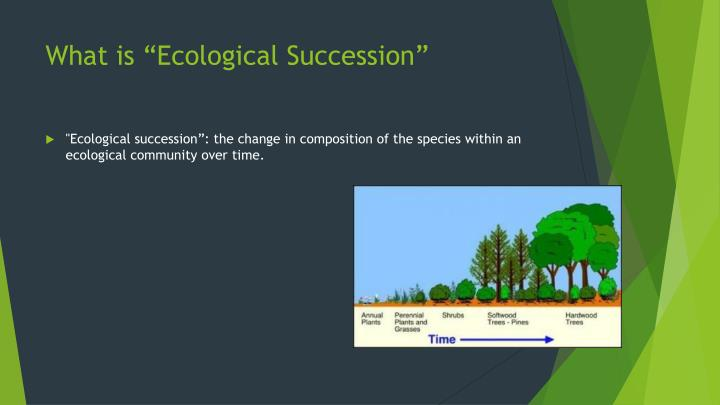 "What is ""Ecological Succession"""