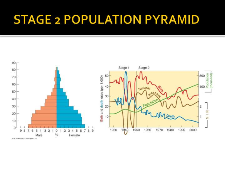 STAGE 2 POPULATION PYRAMID