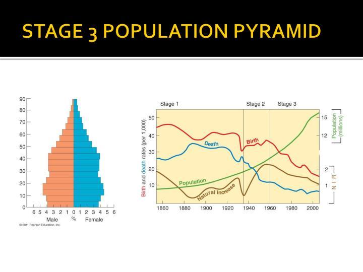 STAGE 3 POPULATION PYRAMID
