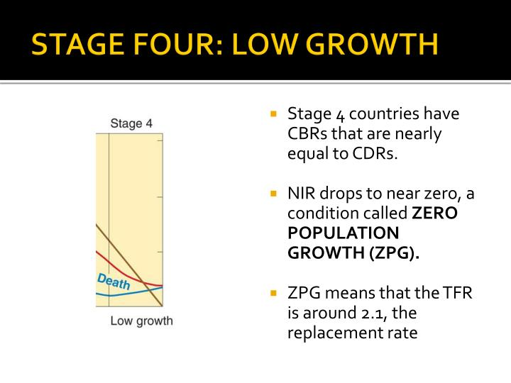 STAGE FOUR: LOW GROWTH