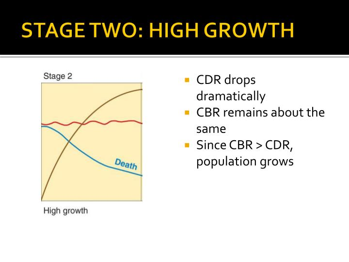 STAGE TWO: HIGH GROWTH