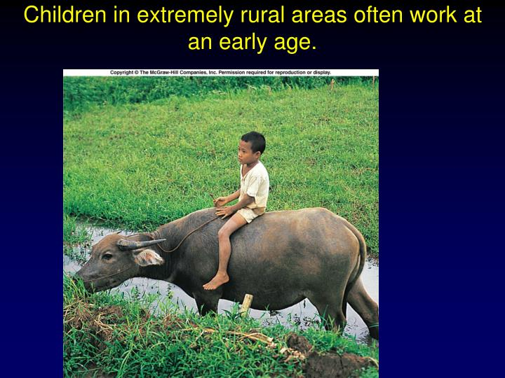 Children in extremely rural areas often work at an early age.