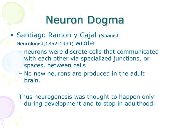 Neuron Dogma