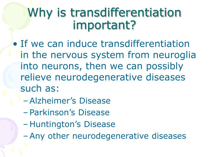 Why is transdifferentiation important?