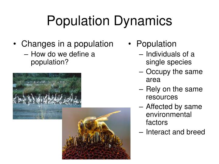 Changes in a population