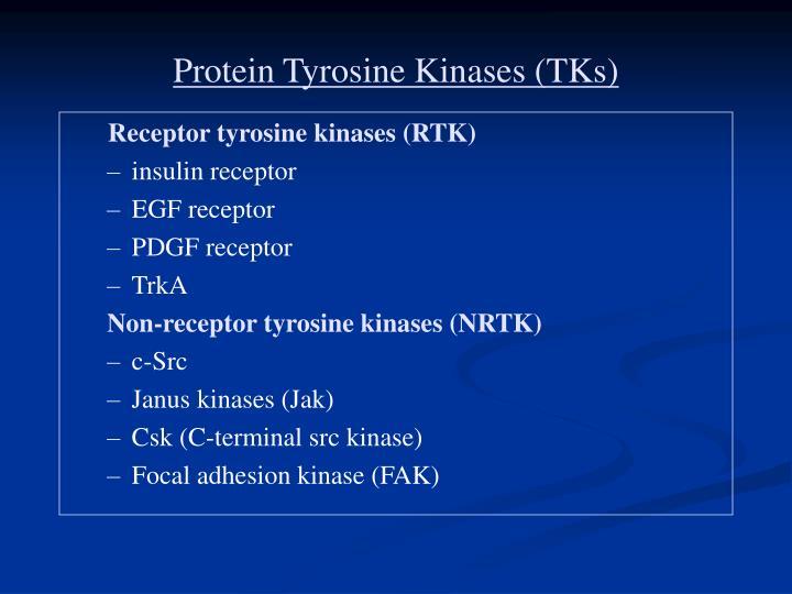 Protein Tyrosine Kinases (TKs)