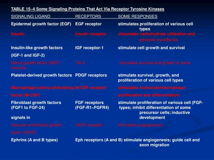TABLE 15–4 Some Signaling Proteins That Act Via Receptor Tyrosine Kinases