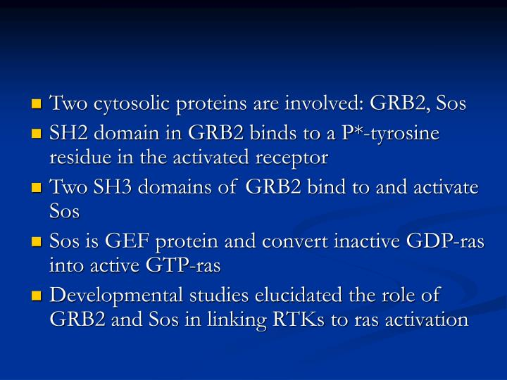 Two cytosolic proteins are involved: GRB2, Sos